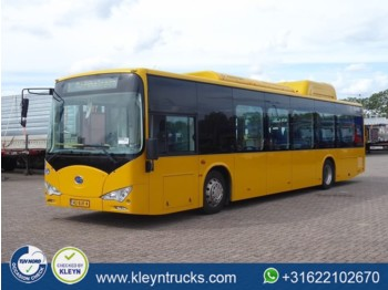 BYD EBUS 12 GREENCITY full electric - mestský autobus